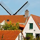 Windmill plays hidden and seek by foppe47