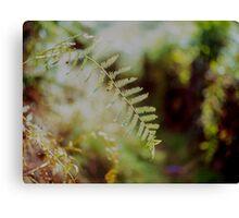 Leafy Bokeh Canvas Print
