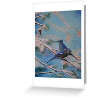 Winter Bluejays Greeting Card