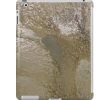 MUDSCAPE 83 iPad Case/Skin