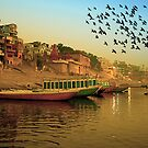 Golden Morning and Holly Ganga by Mukesh Srivastava