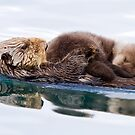 Otterly Adorable! by Michael S Nolan
