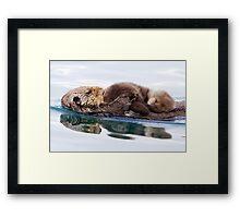 Otterly Adorable! Framed Print