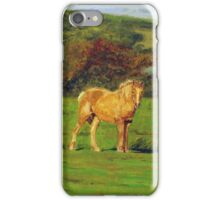 Horse#2 iPhone Case/Skin