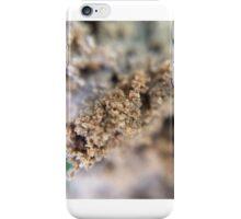 Sand. Silica. Mineral. Quartz. iPhone Case/Skin