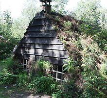 Plaggenhut  uit Holland ( terug in de tijd ) by Dickk
