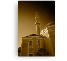 MINARET HOUSE Canvas Print