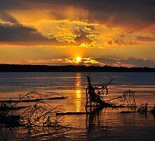 Amazon Sunset 2 by David V. Baxter