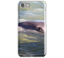 Dolphin at Monkey Mia Western Australia iPhone Case/Skin