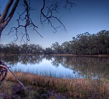 The River Murray, Early Morning - Above Renmark, South Australia by Mark Richards