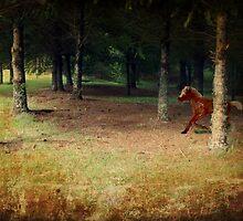 Little Horse Lost. by Lynne Haselden
