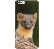 Peeking Pine marten iPhone Case/Skin