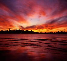 Sunset waters, Sydney Skyline from Rose Bay. by Malcolm Clark