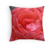 A Peach Of A Rose Throw Pillow