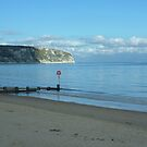 Ballard Down on a fine October afternoon - Swanage Bay by viennablue