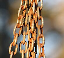 Hanging Chains- Wonder Lake, IL by nielsenca13