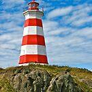 Nova Scotia Lighthouses by David Davies