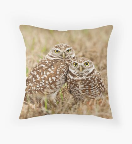 Burrowing Owls - Cape Coral, Florida Throw Pillow