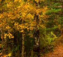 Impressions of Forests - A Walk up the Colorful Autumn Path Sticker