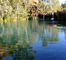 Fern Pool, Karijini by Julia Harwood