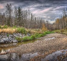 Pebbles on Mill Creek Ravine by Myron Watamaniuk