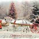 On The Road To Christmas  by Trudi's Images