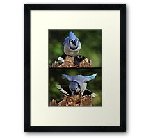 The Thief Got Angry When The Robber Stole His Peanut Framed Print