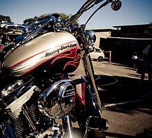 Harley Davidson by Kellie Metcalf