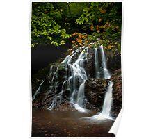 Autumn Cascade Poster