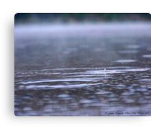 Raindrops in the Mist Canvas Print