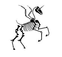 unicorn skeleton running by Desenatorul1976