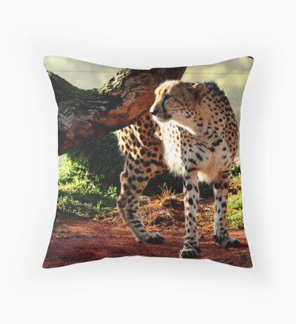 Majestic cheetah Throw Pillow