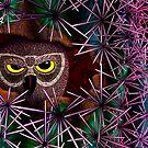 Dark Owl by Jamie Rice