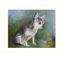 Chihuahua with a butterfly Art Print