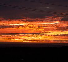 Spicy Hot Sunset by Stacy Hill