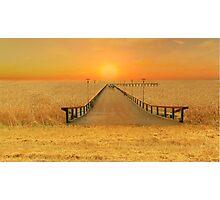 Bridge over the sea of wheat Photographic Print