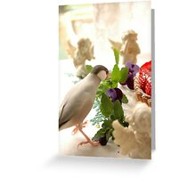 Oiseau gourmand   Greeting Card