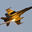 Hornet with Flare! F/A-18A/B Hornet by DespinaT