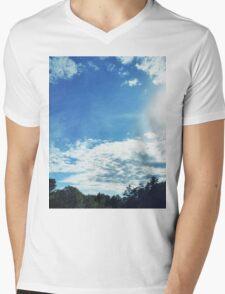 Scenic Beauty Mens V-Neck T-Shirt