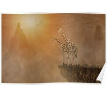 Two giraffes at  the high mountain Poster