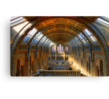 Natural History Museum - London Canvas Print