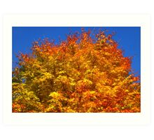 Golden Tree, Westonbirt Arboretum Art Print