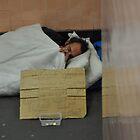 Homeless Man - Melbourne by alexwaldmeyer
