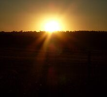 Greendale Sunset by Natasha Hurst
