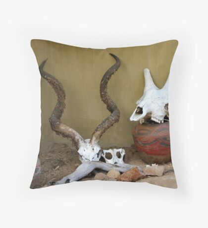 Culture Collection Throw Pillow