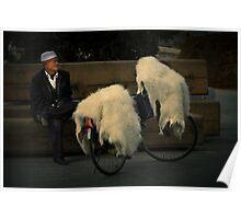 Mongolia ....... Poster