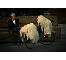 Mongolia ....... Photographic Print