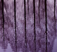 Water Trees - JUSTART © by JUSTART