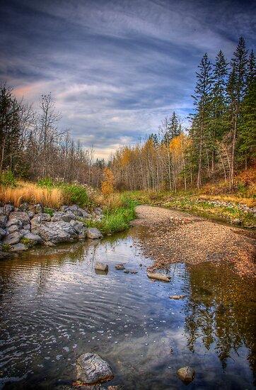 Autumn at Mill Creek by Myron Watamaniuk
