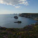 Pointe de Portzen by marens